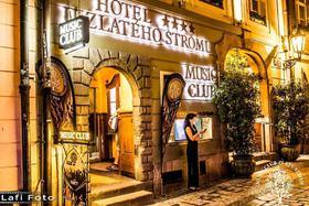 voir les prix pour Hôtel U Zlateho Stromu