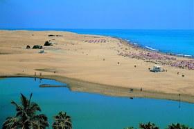Image de Oasis Playa Maspalomas